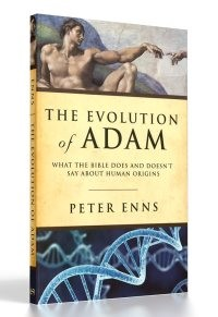 evolution-of-adam